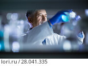 Купить «Senior male researcher carrying out scientific research in a lab», фото № 28041335, снято 27 апреля 2018 г. (c) PantherMedia / Фотобанк Лори