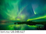 Купить «Aurora Borealis over the South Heart River, Winagami Wildland Provincial Park, Alberta, Canada. August 2017.», фото № 28048627, снято 21 мая 2018 г. (c) Nature Picture Library / Фотобанк Лори