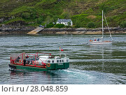 MV Glenachulish, turntable ferry operating a summer service between Glenelg and Kylerhea, on the Isle of Skye, Scottish Highlands, Scotland, UK, June 2017. Стоковое фото, фотограф Philippe Clement / Nature Picture Library / Фотобанк Лори