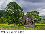 Купить «Dun Telve broch near Glenelg, showing Iron Age drystone hollow-walled structure, Ross and Cromarty, Scottish Highlands, Scotland, UK, June 2017», фото № 28048867, снято 14 августа 2018 г. (c) Nature Picture Library / Фотобанк Лори