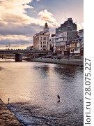 Купить «Shijo bridge over Kamo-gawa, Kamo River, with two herons standing in it. Kyoto city artistic sunset scenery, Japan.», фото № 28075227, снято 19 ноября 2017 г. (c) age Fotostock / Фотобанк Лори