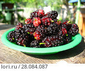 Ripe dark berries of a mulberry on a plate. Стоковое фото, фотограф Александр Птах / Фотобанк Лори