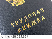 Трудовая книжка (2018 год). Редакционное фото, фотограф Юрий Морозов / Фотобанк Лори