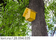 Купить «Wooden birdhouse hanging from a tree with green leaves», фото № 28094035, снято 7 августа 2017 г. (c) FotograFF / Фотобанк Лори
