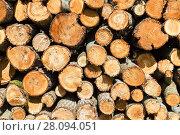 Купить «Chopped and stacked up dry firewood as background», фото № 28094051, снято 10 августа 2017 г. (c) FotograFF / Фотобанк Лори