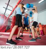 Купить «Boxer sparring on the ring», фото № 28097727, снято 12 апреля 2017 г. (c) Яков Филимонов / Фотобанк Лори