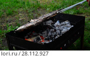 Купить «barbecue of pork cooked on the grill», видеоролик № 28112927, снято 10 июня 2017 г. (c) Володина Ольга / Фотобанк Лори