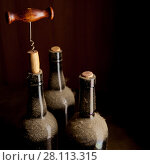 Купить «Three old wine bottles and corkscrew», фото № 28113315, снято 28 января 2018 г. (c) Роман Сигаев / Фотобанк Лори