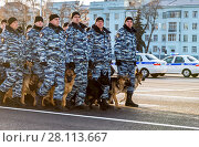 Купить «Russian police unit in winter uniform with police dogs on the Kuibyshev square», фото № 28113667, снято 16 ноября 2017 г. (c) FotograFF / Фотобанк Лори
