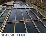 Купить «Opened reservoirs of fish farm», фото № 28114883, снято 4 февраля 2018 г. (c) Яков Филимонов / Фотобанк Лори