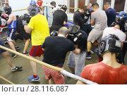 Купить «MOSCOW - FEB 9, 2017: Young men train on ring in Dobrynya boxing club», фото № 28116087, снято 9 февраля 2017 г. (c) Losevsky Pavel / Фотобанк Лори