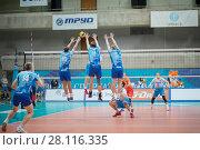 Купить «MOSCOW - NOV 5, 2016: Players jump at volleyball game Dynamo (Moscow) and Ural (Ufa) in Palace of Sports Dynamo», фото № 28116335, снято 5 ноября 2016 г. (c) Losevsky Pavel / Фотобанк Лори