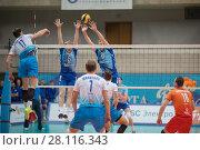 Купить «MOSCOW - NOV 5, 2016: Athletes during volleyball game Dynamo (Moscow) and Ural (Ufa) in Palace of Sports Dynamo», фото № 28116343, снято 5 ноября 2016 г. (c) Losevsky Pavel / Фотобанк Лори