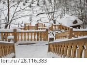 Купить «Wooden stairs with carving in Russian Orthodox Monastery at winter day», фото № 28116383, снято 15 ноября 2016 г. (c) Losevsky Pavel / Фотобанк Лори