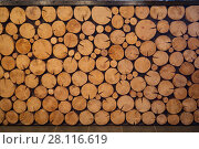 Logs of trees, pile of yellow round wood logs, this is decoration of bar counter. Стоковое фото, фотограф Losevsky Pavel / Фотобанк Лори