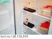 Купить «Open refrigerator with plastic containers with different tests», фото № 28116919, снято 19 октября 2016 г. (c) Losevsky Pavel / Фотобанк Лори