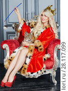 Купить «Young blonde woman in red cloak and crown sits in armchair with lynx cub», фото № 28117099, снято 14 ноября 2015 г. (c) Losevsky Pavel / Фотобанк Лори