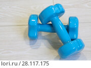 Купить «Two blue new dumbbells are on wooden floor in fitness center, close up», фото № 28117175, снято 22 октября 2016 г. (c) Losevsky Pavel / Фотобанк Лори