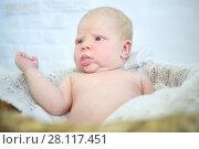 Купить «Beautiful baby lies in white plaid in studio, close up portrait», фото № 28117451, снято 27 августа 2016 г. (c) Losevsky Pavel / Фотобанк Лори