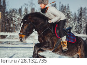 Купить «Winter teenage girl jump horse ride jumping», фото № 28132735, снято 26 января 2014 г. (c) Julia Shepeleva / Фотобанк Лори