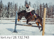 Купить «Winter teenage girl jump horse ride jumping», фото № 28132743, снято 26 января 2014 г. (c) Julia Shepeleva / Фотобанк Лори