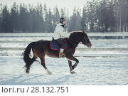 Купить «Winter teenage girl jump horse ride jumping», фото № 28132751, снято 26 января 2014 г. (c) Julia Shepeleva / Фотобанк Лори
