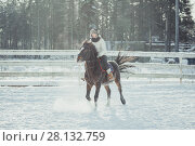 Купить «Winter teenage girl jump horse ride jumping», фото № 28132759, снято 26 января 2014 г. (c) Julia Shepeleva / Фотобанк Лори
