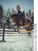 Купить «Winter teenage girl jump horse ride jumping», фото № 28132835, снято 26 января 2014 г. (c) Julia Shepeleva / Фотобанк Лори