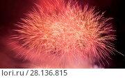Купить «Spectacular fireworks show light up the sky. New year celebration.», фото № 28136815, снято 5 июля 2020 г. (c) easy Fotostock / Фотобанк Лори