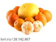 Купить «Цитрусовые фрукты (Апельсин, мандарин, минеола, памело) , изолированно на белом фоне», фото № 28142867, снято 1 января 2014 г. (c) Литвяк Игорь / Фотобанк Лори