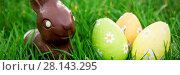Купить «Chocolate bunny in the grass with easter eggs», фото № 28143295, снято 23 января 2019 г. (c) Wavebreak Media / Фотобанк Лори