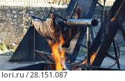 Купить «Whole bull carcass fried on spit on Medieval Fiesta in Besalu, Spain», видеоролик № 28151087, снято 27 сентября 2017 г. (c) Яков Филимонов / Фотобанк Лори