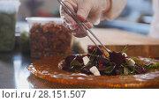 Купить «Chef serves the salad by placing the ingredients on a plate and laying the nuts with tweezers», фото № 28151507, снято 20 апреля 2018 г. (c) Константин Шишкин / Фотобанк Лори