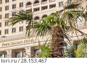 Купить «Пальма на фоне гостиницы Four Seasons Hotel Moscow», фото № 28153467, снято 26 сентября 2015 г. (c) Алёшина Оксана / Фотобанк Лори