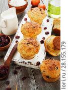 Купить «Muffins with dried cranberries», фото № 28155179, снято 15 декабря 2017 г. (c) Надежда Мишкова / Фотобанк Лори