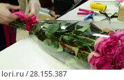 Купить «florist tie ribbon on a bouquet of pink roses», видеоролик № 28155387, снято 11 марта 2018 г. (c) Володина Ольга / Фотобанк Лори