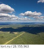 Купить «Aerial view forest plains with power line», фото № 28155963, снято 14 июля 2017 г. (c) Владимир Мельников / Фотобанк Лори