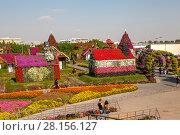 Купить «Парк цветов в Дубае (Dubai Miracle Garden). Объединённые Арабские Эмираты», фото № 28156127, снято 23 декабря 2014 г. (c) Сергей Афанасьев / Фотобанк Лори