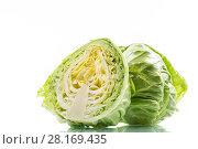 Купить «cabbage young green», фото № 28169435, снято 13 марта 2018 г. (c) Peredniankina / Фотобанк Лори