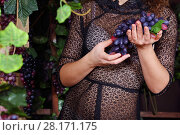 Купить «Woman in black transparent dress holds grape in studio, noface», фото № 28171175, снято 27 ноября 2015 г. (c) Losevsky Pavel / Фотобанк Лори