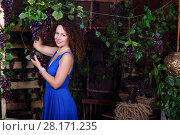 Купить «Beautiful smiling woman in blue dress poses with grape vines in studio», фото № 28171235, снято 27 ноября 2015 г. (c) Losevsky Pavel / Фотобанк Лори