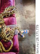 Купить «Child hands, legs and two snakes on sofa in room, noface, top view», фото № 28171779, снято 18 июля 2016 г. (c) Losevsky Pavel / Фотобанк Лори