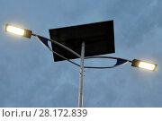 Купить «Public lighting, Jamil Nasser Highway, MG-450, 2017, Guaxupé, Minas Gerais, Brazil.», фото № 28172839, снято 10 декабря 2017 г. (c) age Fotostock / Фотобанк Лори