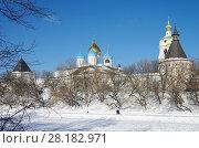 Купить «Москва, Новоспасский монастырь зимой», фото № 28182971, снято 27 февраля 2018 г. (c) Natalya Sidorova / Фотобанк Лори