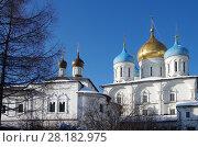 Купить «Москва, Новоспасский монастырь зимой», фото № 28182975, снято 27 февраля 2018 г. (c) Natalya Sidorova / Фотобанк Лори