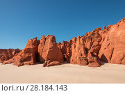 Купить «Spectacular views of ochre-coloured earth and sandstone cliffs, white sands and aquamarine waters of the Dampier Peninsula is one of the most spectacular...», фото № 28184143, снято 23 апреля 2018 г. (c) Nature Picture Library / Фотобанк Лори