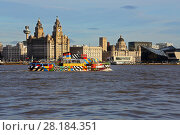 Купить «Mersey Ferry 'Snowdrop' on the River Mersey passing the Three Graces Buildings, Liverpool waterfront, UK, December 2015», фото № 28184351, снято 4 июля 2020 г. (c) Nature Picture Library / Фотобанк Лори