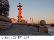Купить «Rostral column early in the morning at dawn, St. Petersburg, Russia», фото № 28191259, снято 14 марта 2015 г. (c) Юлия Бабкина / Фотобанк Лори