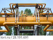 Купить «Сильфонный и П-образный компенсаторы на газопроводах, на эстакаде», фото № 28191691, снято 30 июля 2011 г. (c) Кекяляйнен Андрей / Фотобанк Лори