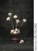 """Купить «Натюрморт """"Букет грибов"""" с  шампиньонами на деревянных палочках», фото № 28192043, снято 11 марта 2018 г. (c) V.Ivantsov / Фотобанк Лори"""